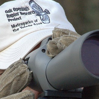 Oak Openings Raptor Spotters Have Eyes For Blobs