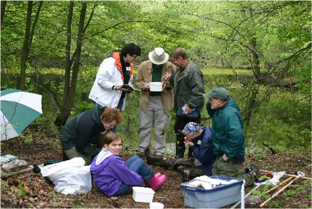 vernal-pool-volunteersjpg