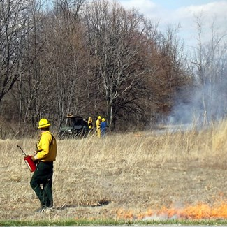 It's Spring Prescribed Burn Season