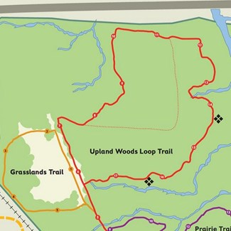 Trail Detour Ahead: Wildwood Red Trail