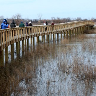 Howard Marsh Metropark to Open April 28 Near Lake Erie