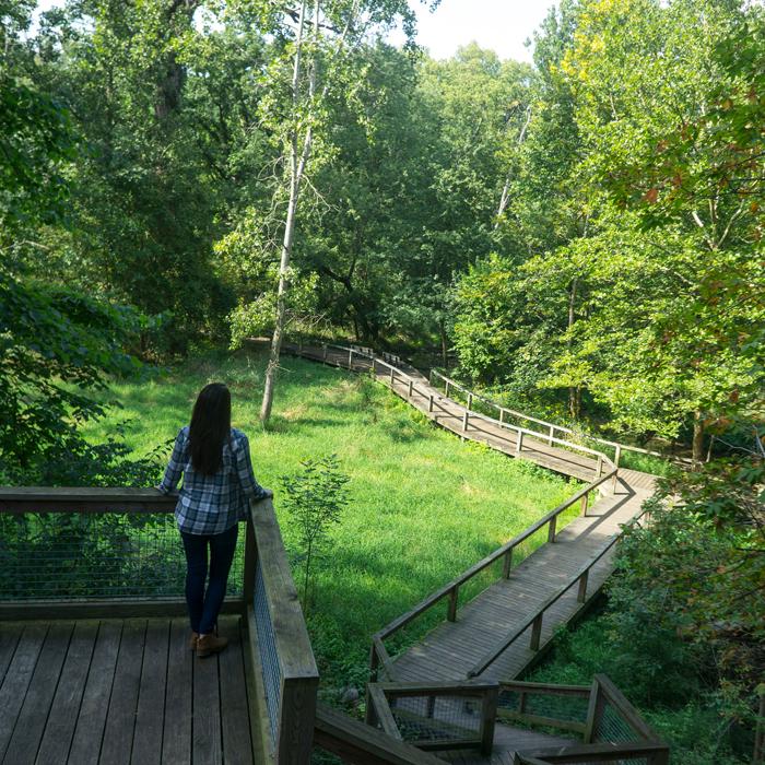 Wildwood | Metroparks Toledo