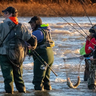 The Spring Run: Walleye Fishing on the Maumee River