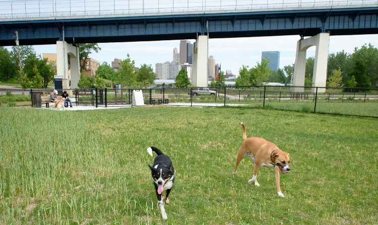 040-middlegrounds-and-dog-run-5-26-17-750x350jpg