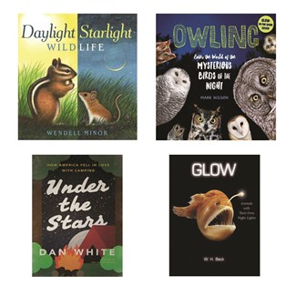 Librarian Picks Great Books to Read by Flashlight
