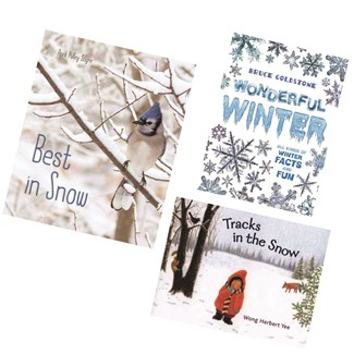 Librarian Picks Books for Outdoor Snowy Day Fun