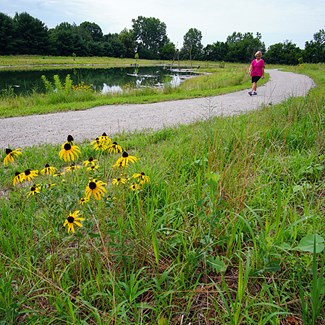 Newest Metropark Draws Nature Lovers After Quiet Opening